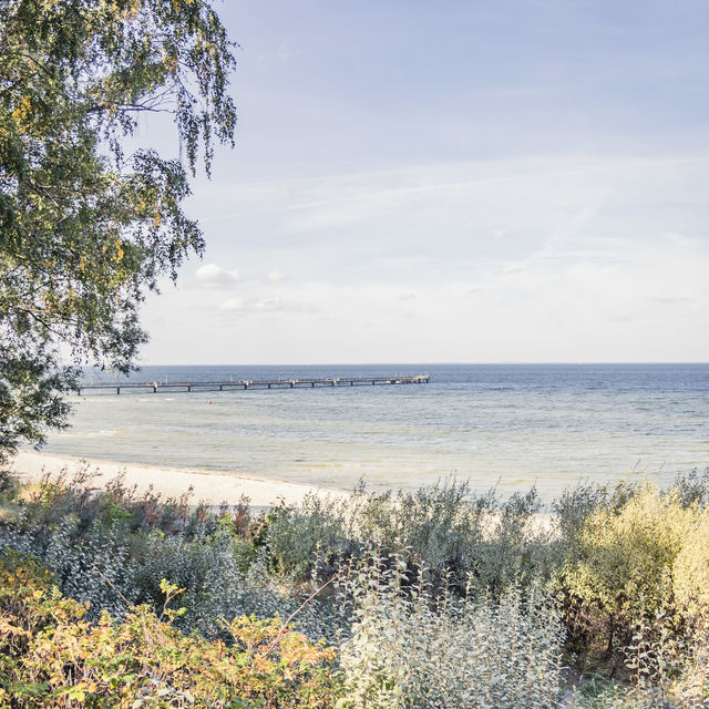 Bay of Greifswald
