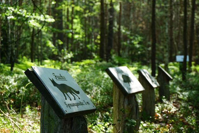 The August-Bartelt nature trail