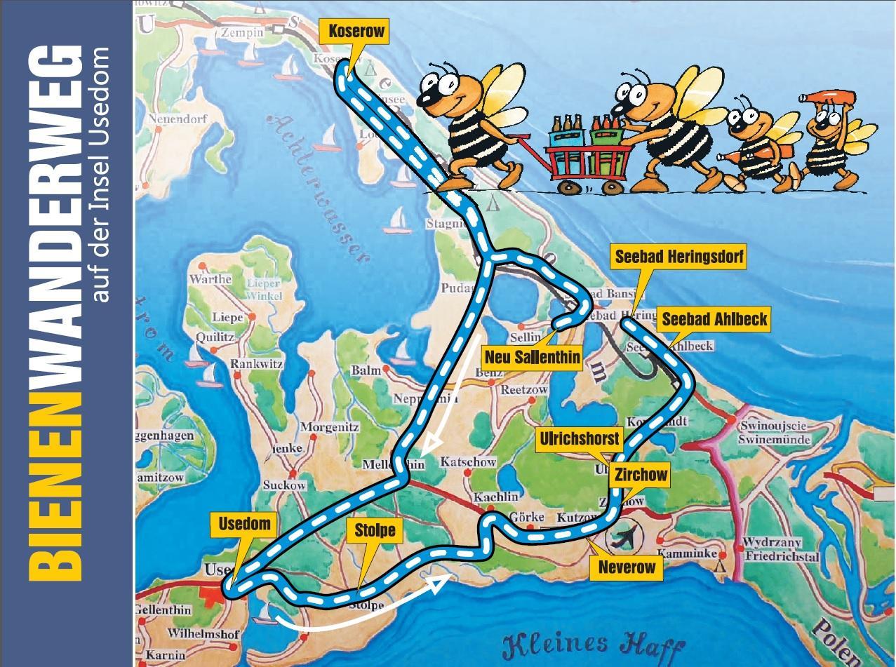 Insel Usedom Karte.Bienen Auf Usedom Bienenwanderweg
